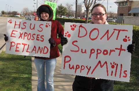Plano Petland rally