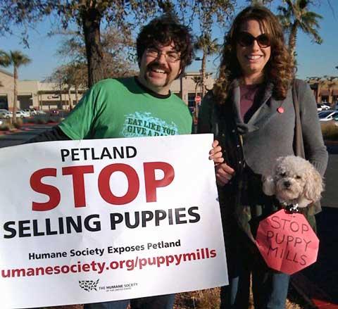 Las Vegas Petland rally