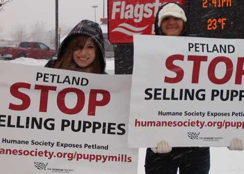 Detroit Petland rally