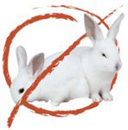 """Hop To It"" to end rabbit testing"