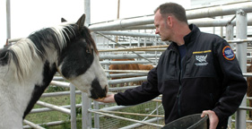 Scotlund Haisley, HSUS Emergency Services, feeds a rescued horse in Nebraska
