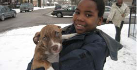 Young boy holding pit bull