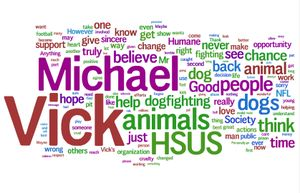 Word cloud of blog reader reaction to Michael Vick