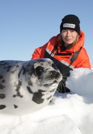 Rebecca Aldworth with baby harp seal