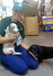 Humane Society International responder Dr. Rebecca Berg with dogs Dieter and Bella in Haiti