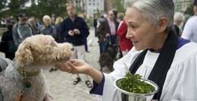 Pet blessing at Washington National Cathedral in D.C.