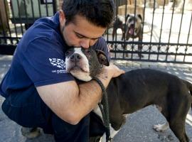 Rescued dog gets a hug