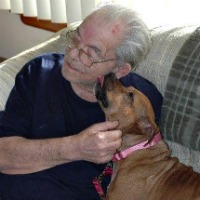 Abby the pit bull with her family's grandfather