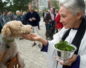 Pet blessing service at the National Cathedral in Washington, D.C.