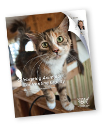 The HSUS's 2010 annual report
