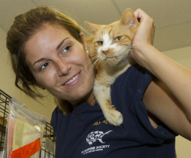 HSUS' Tara Loller with one of nearly 700 cats rescued from neglect in Florida