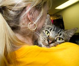 Volunteer holds rescued cat