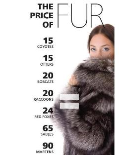 Price of fur graphic