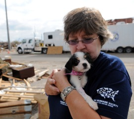 Laura Bevan of The HSUS with rescued puppy Bertie