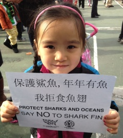No Shark Fin Pledge during Chinese New Year celebrations