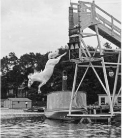Diving horse act