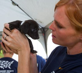 HSUS South Carolina puppy mill rescue