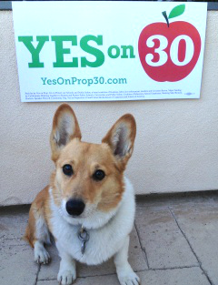 Sutter Brown - Yes on Prop 30