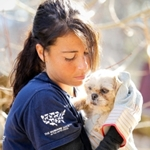 HSUS Puppy Mill Rescue