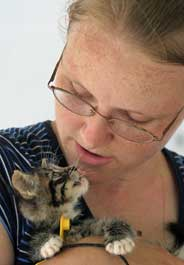 Kitten cared for by HSUS after flooding in Coffeyville, Kansas