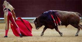 Matador and bull in bullfighting ring in Spain