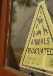 Animals evacuated sign in Fallbrook, California