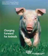 HSUS 2006 annual report