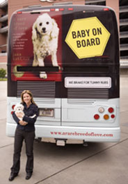Baby's Rare Breed of Love Road Trip tour bus