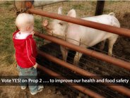Vote YES! on Prop 2 to improve our health and food safety