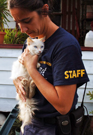 The HSUS rescues a cat in Texas after Hurricane Ike