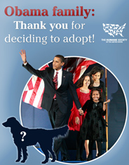 184x235_card_front_hsus_obama