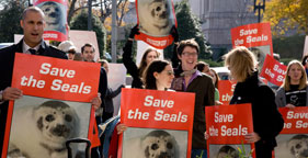 Nigel Barker of America's Next Top Model at rally against Canadian seal hunt
